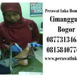 Perawat Luka Home Care Cimanggu 1 Bogor
